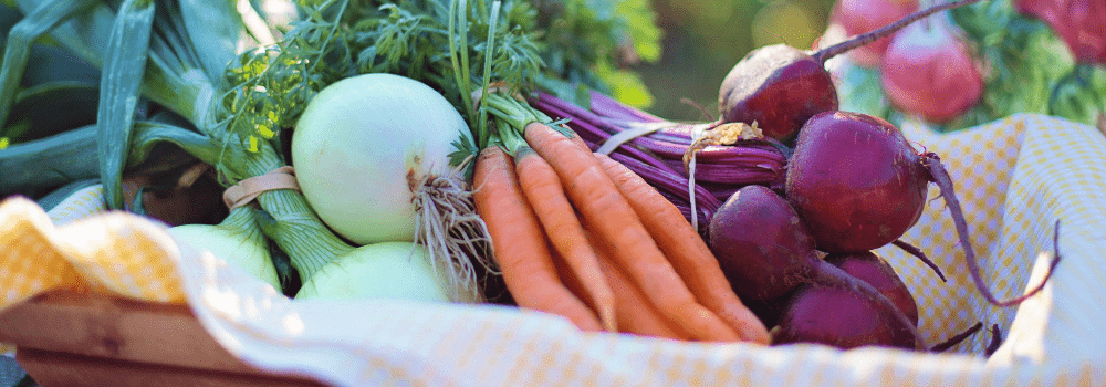 10 Easiest Vegetables to Grow at Home to Kickstart your Diet