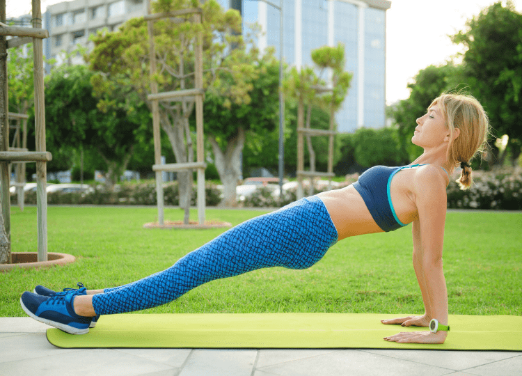 Reverse Plank Exercise